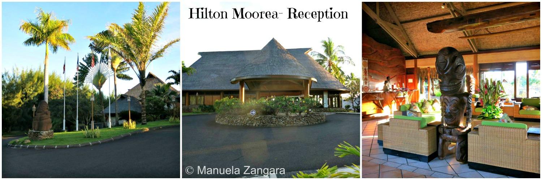 HM reception