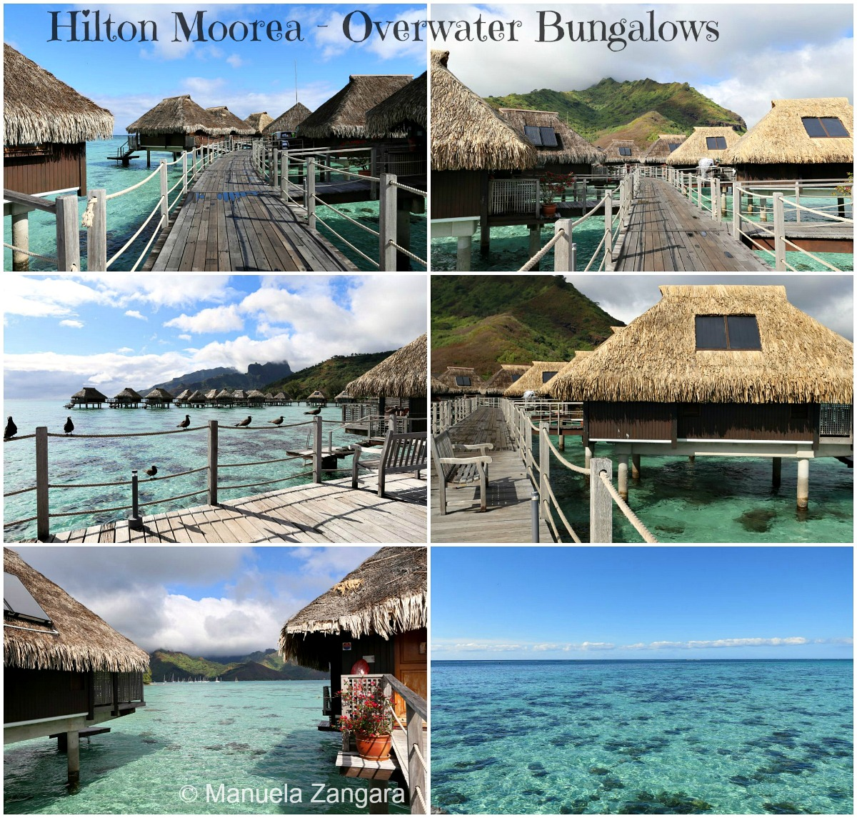 Hilton Moorea 3