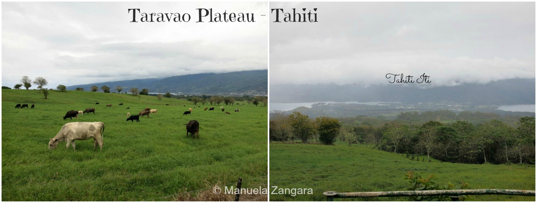 Tavarao