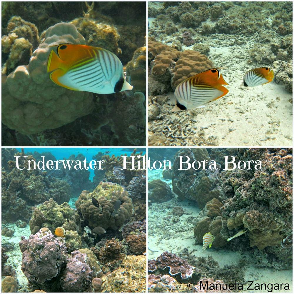 Underwater HBB