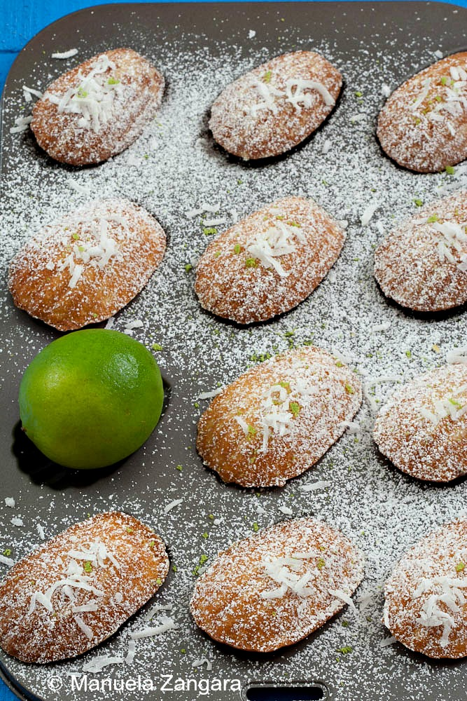 Lime and Coconut Madeleines