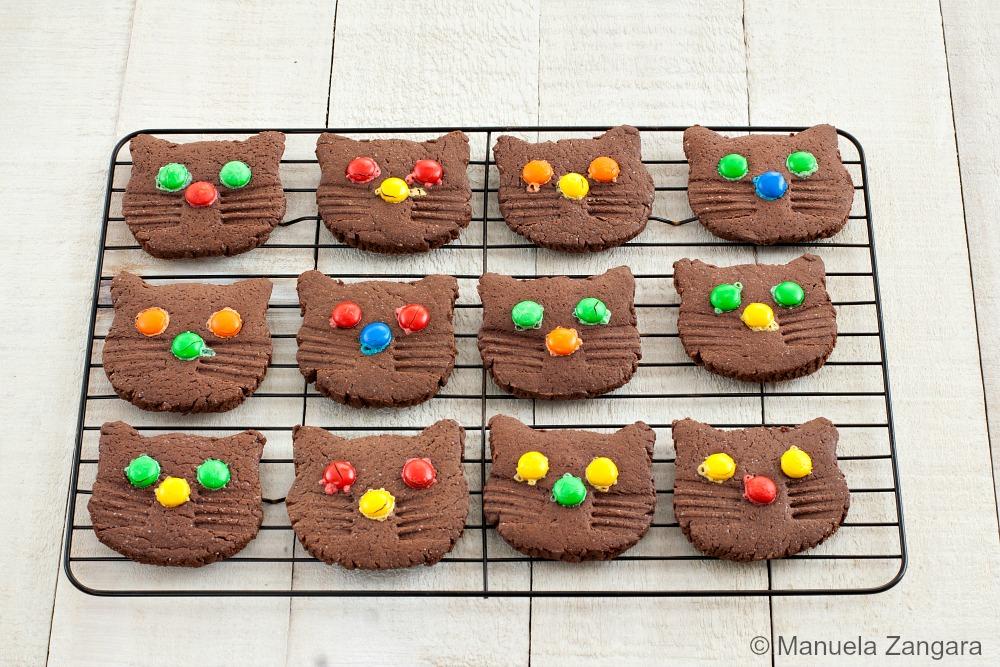 Kitten Chcocolate Cookies