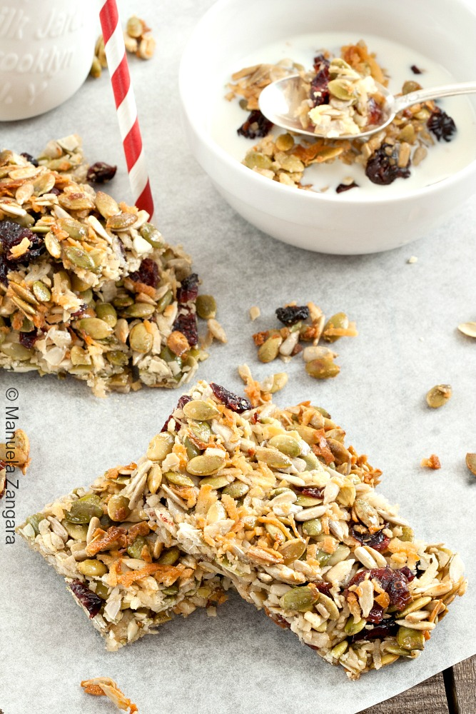 Seeded Cranberry Crunch Granola Bars