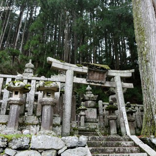 Koyasan Guide – Japan