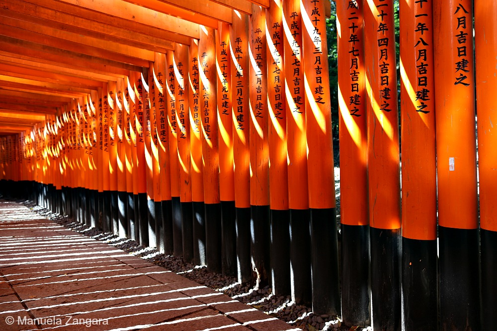 Nara and Fushimi Inari guide