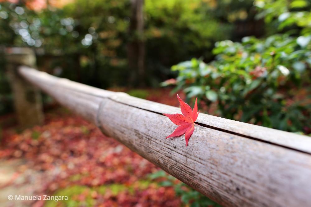 Arashiyama – Japan Guide