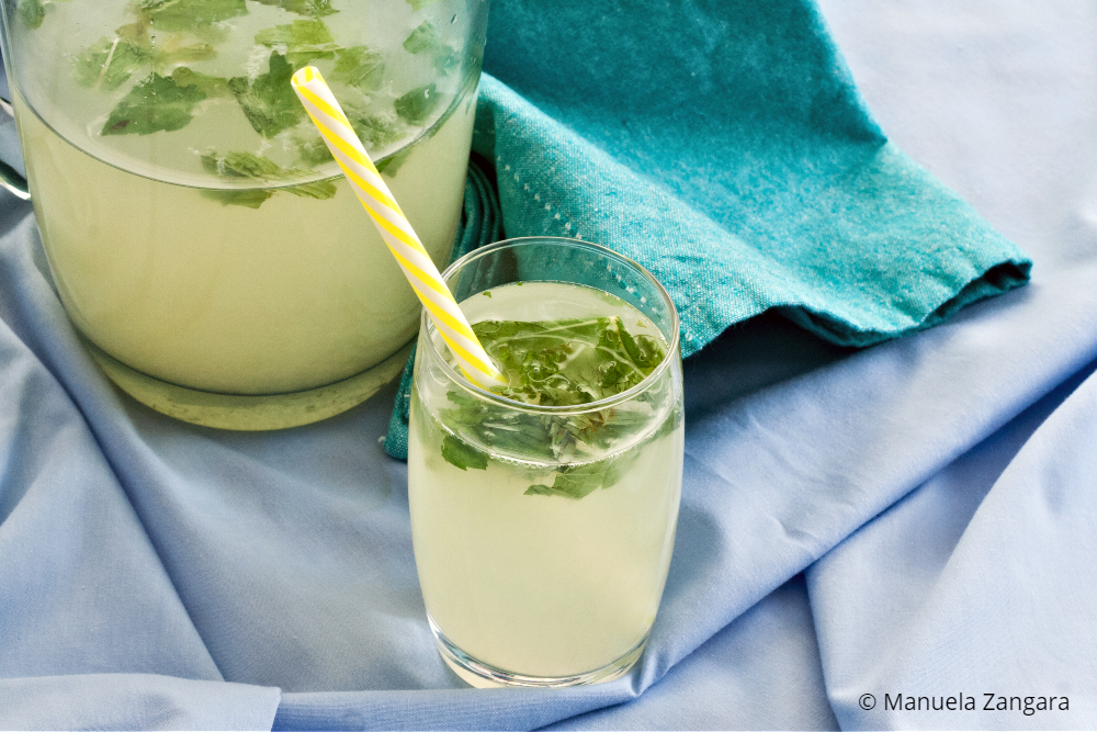Low Fodmap Mint Lemonade