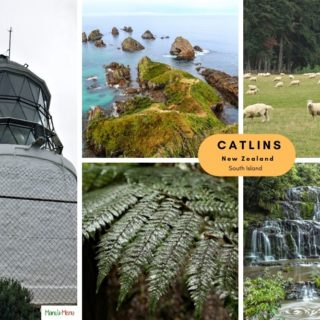Catlins - New Zealand Guide